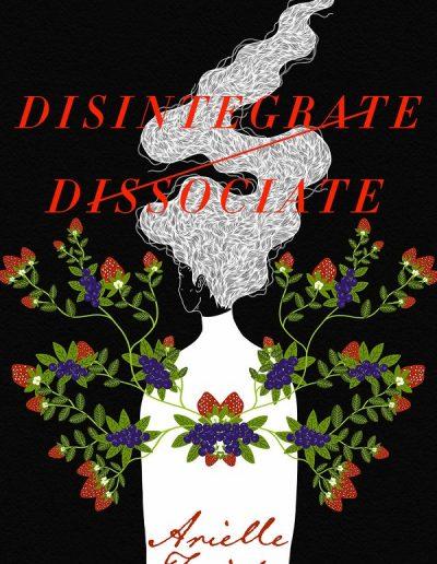 Disintegrate / Dissociate by Arielle Twist