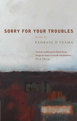 Sorry For Your Troubles by Pádraig Ó Tuama