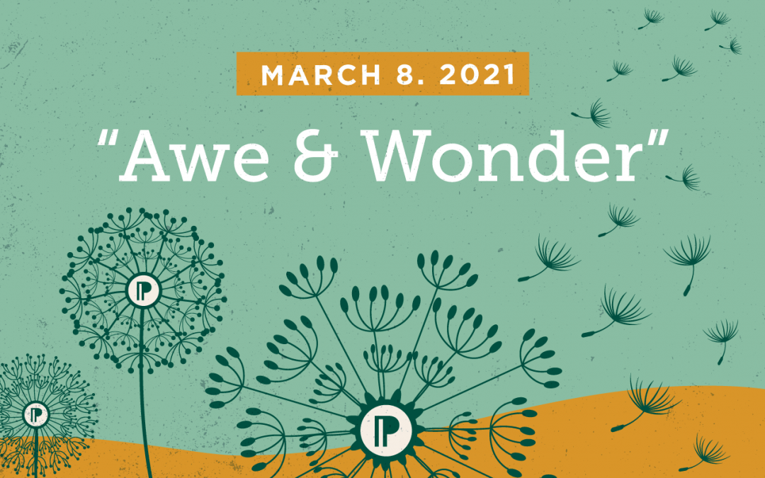 019: Awe & Wonder